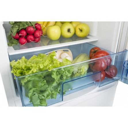 Изображение Холодильник Ergo MRF 170 - изображение 21