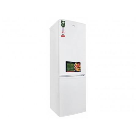 Изображение Холодильник Ergo MRF 170 - изображение 2