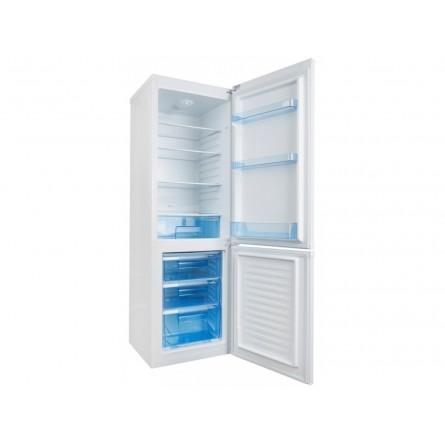 Изображение Холодильник Ergo MRF 170 - изображение 5