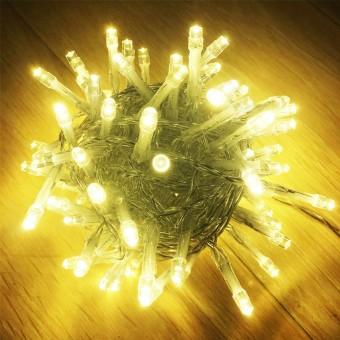 Зображення Гірлянда  100 LED Worm white