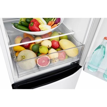 Зображення Холодильник LG GA-B379SQUL - зображення 15